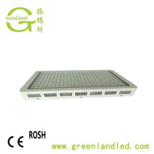 Il fungo dell'interno quadrato delle serre 450W LED si sviluppa chiaro per Plants