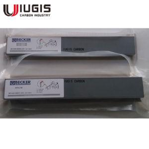 Wn 124-195 Graphite pour Becker 90137200007 des ailettes de la pompe