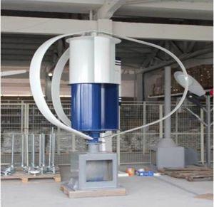 Eixo vertical de 800 W de energia renovável Manufacuturer Turbina Eólica