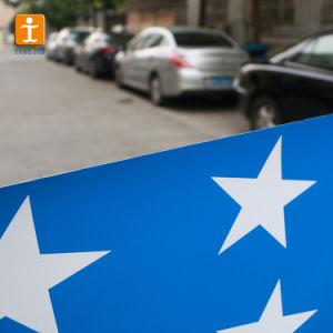 イベント(TJ-32)のためにPVCビニールの旗の印刷を広告する習慣