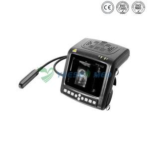 Ysb380V digital portátil ultra-sonografia Veterinária de diagnóstico
