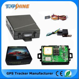 Горячий продавать водонепроницаемый GPS мотоциклов Tracker с бесплатной платформы слежения