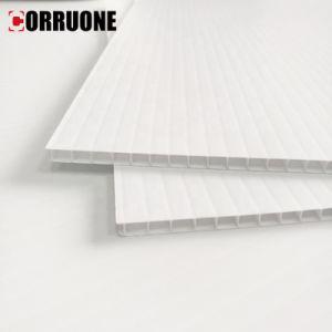 El blanco de plástico corrugado y estrías hojas/PP
