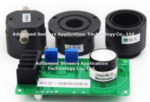 HCl van het Chloride van de waterstof de Elektrochemische Miniatuur van het Giftige Gas van de MilieuControle van de Sensor van de Detector van het Gas