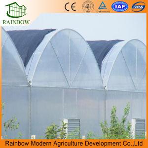 Multi serra del film di materia plastica della portata di agricoltura per la verdura