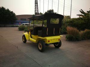 Sem escovas gracioso 3Kw Royal Passeios Veículo de passageiros