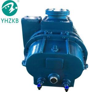 공기 이젝터 물 반지 펌프 진공 시스템을%s 가진 루트 펌프