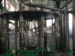 Digitale Automatische het Vullen van het Mineraalwater van de Fles van het Glas van het Huisdier van 5 Gallon Contral Automatische het Afdekken Machine (qgf-450)