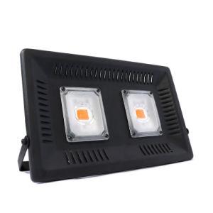 Ultracompacto de alta potencia de la Mazorca crece la luz para las plantas de Interior / Invernadero