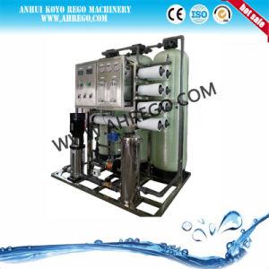 2000L/H de la planta de ósmosis inversa del sistema de tratamiento de agua RO