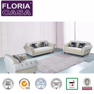 ホーム家具ファブリック現代余暇のソファの部門別のDiviniのソファーセット