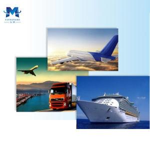 Перевозимый самолетами груз Китая к Майами США