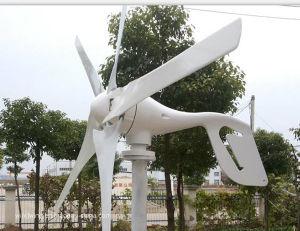 10kw Aerogenerador horizontal con el controlador de red y un inversor