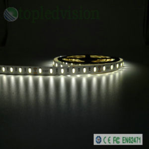 Striscia flessibile di /Flexible LED dell'indicatore luminoso di striscia di SMD5730 LED Strip/LED