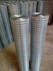 Treillis soudés en acier galvanisé
