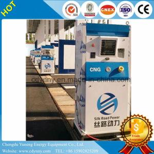 Erogatore dell'ugello CNG del doppio di alta qualità di sconto per la stazione di CNG