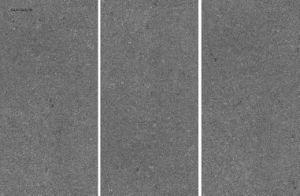 Новый дизайн строительных материалов для гранулированных химикатов из фарфора поверхности литьевого формования плитки пола (600*1200 мм)