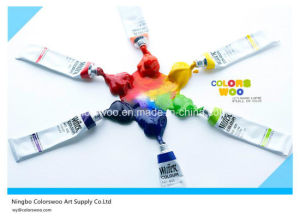 Verf van de Kleur van de Levering 6ml*12PCS van de kunst de niet Giftige Acryl in de Buis van het Aluminium voor het Trekken van Studenten