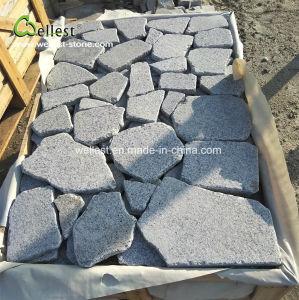 灰色の花こう岩の緩い石造りの外部の床の石の個々の部分の石の石セット