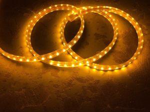 Indicatore luminoso ad alta tensione della corda di colore bianco caldo (HVSMD5050)