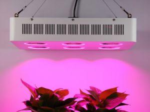 1200W完全なスペクトルLEDは軽いセリウムRoHSを育てる