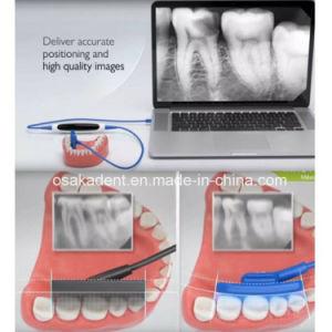 Neuer zahnmedizinischer weicher Röntgenstrahl-Fühler Korea-Ez Digital