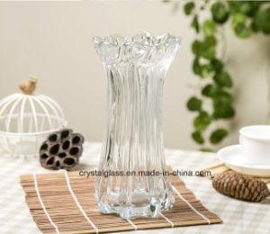 Dracaena Sanderiana Vase vase transparent Vase de fleurs séchées