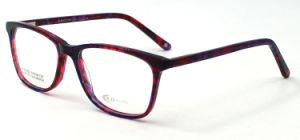 Kleur twee die de Hete Glazen van het Oog (FXA1209) galvaniseren