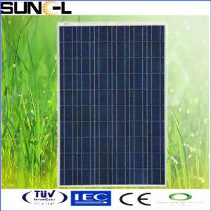 Painel Solar (SNM-P240-280W)