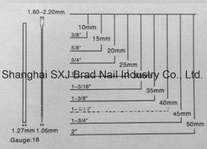F de Spijker zonder kop nagelt Geproduceerd die en in Fabriek inpakt