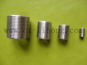 2-1/2  l'acciaio inossidabile 316 DIN2999 chiude il capezzolo dal tubo