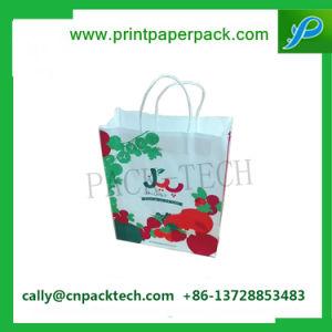Sacco di carta del vino del sacchetto del regalo dell'imballaggio del sacchetto del regalo su ordinazione del Kraft