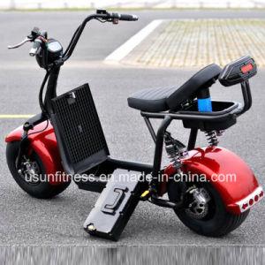 Bewegungsroller-elektrischer Roller mit entfernen Batterie für Erwachsenen