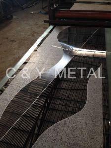 Strato della baracca dei 304 elevatori decorativi con lo specchio, acquaforte e la linea sottile