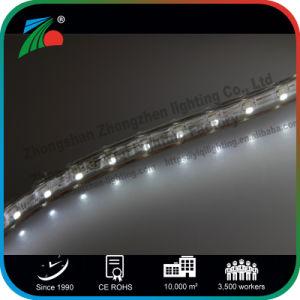 Indicatore luminoso bianco 110V dell'indicatore luminoso di striscia dell'indicatore luminoso di striscia del Ce 10mm 5050 SMD