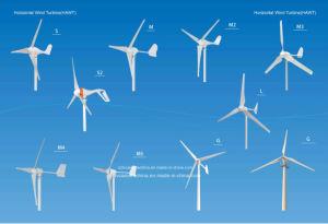 300W pequeno gerador eólico Horizontal 12V/24V para casa (SHJ-300S)