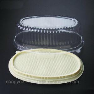 チーズボックスが付いている軽いチーズボックス楕円形ボックスチーズボックス