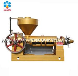 Huile de graines de thé froid de l'équipement de presse
