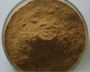 Estratto acido Oleanolic di Lucidum del Ligustrum di 98% per i supplementi dell'alimento