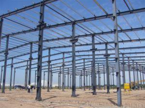 Edificio de la estructura de acero/marco de estructura de acero (SSW-274)