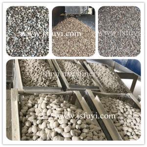 10 jaar vervaardigings van de machine van de meststoffengranulator in China