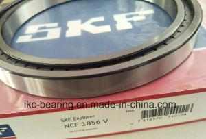 Le SKF NCF1856-V des roulements à rouleaux cylindriques Ncf1856V