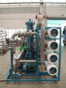 pianta di desalificazione bevente del sistema del RO dell'acqua di mare 30t