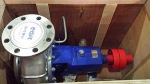 Pompa centrifuga orizzontale di processo chimico senza motore