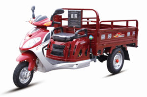 XinlingyingのJialing 110cc Air Cooled Small Cargo Tricycle
