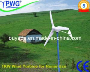 1kw Wind Generator met Ce (FD3.0-1000)
