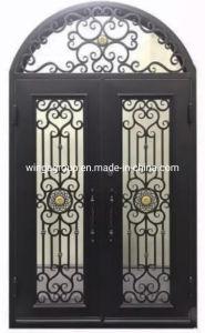 Flor de Arte Loft vidrio templado de hierro Exterior Puertas de entrada Wg-Sg-35