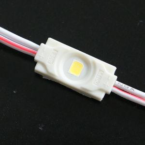 Illuminazione del LED per i casi di visualizzazione 0.3W SMD LED Moduels
