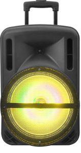 Le Président de hayon 12inch portable alimenté par batterie PA L'orateur Bluetooth USB/SD L'enregistrement de radio FM et lecteur USB/SD USB F12-1