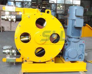 Bon fournisseur en Chine pompe péristaltique pompe péristaltique Fabricant flexible